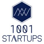 1001 Startups logo - Divine Box