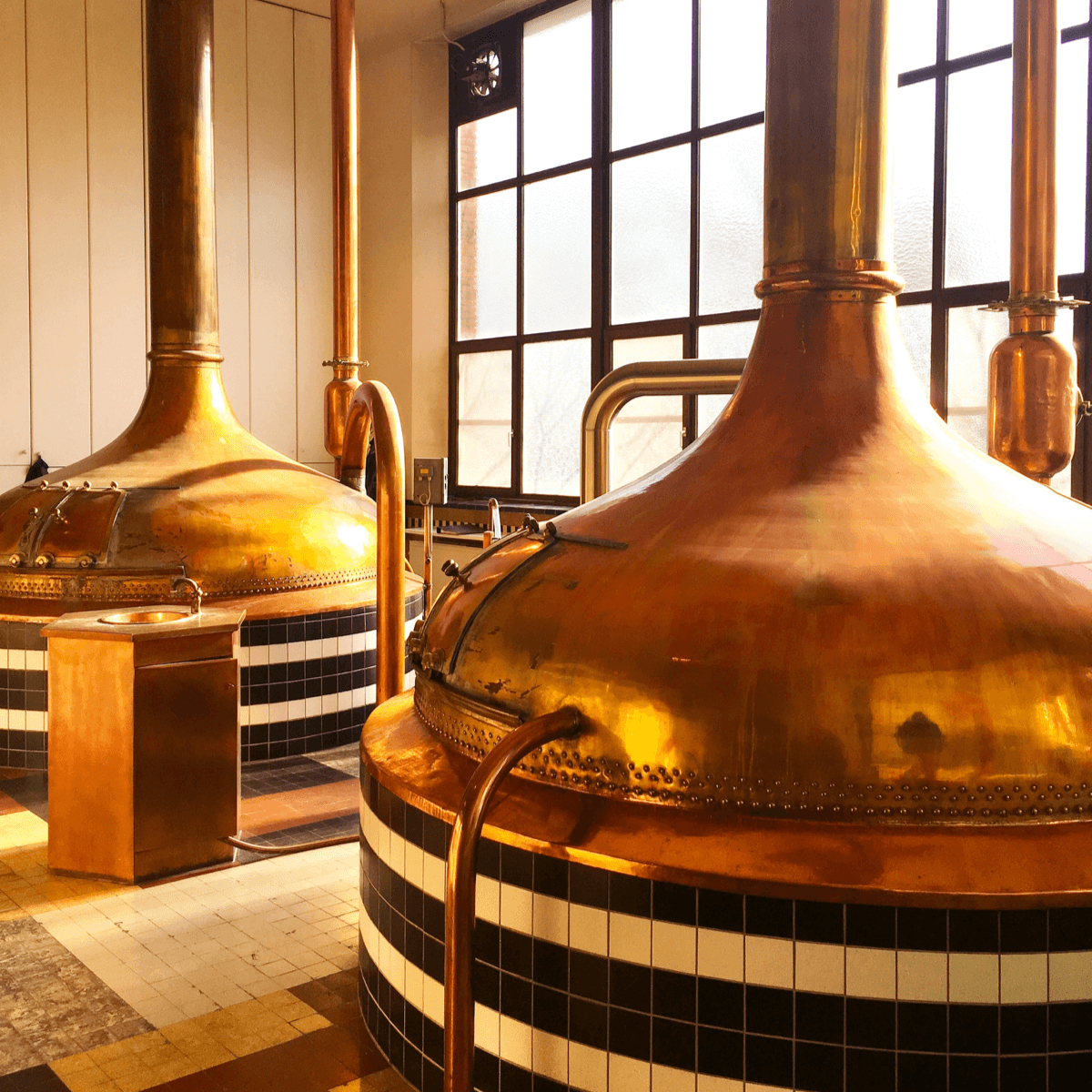 C'est dans ces grandes cuves en cuivre que les moines de l'abbaye de Westmalle ont brassé leurs bières jusqu'en 1956