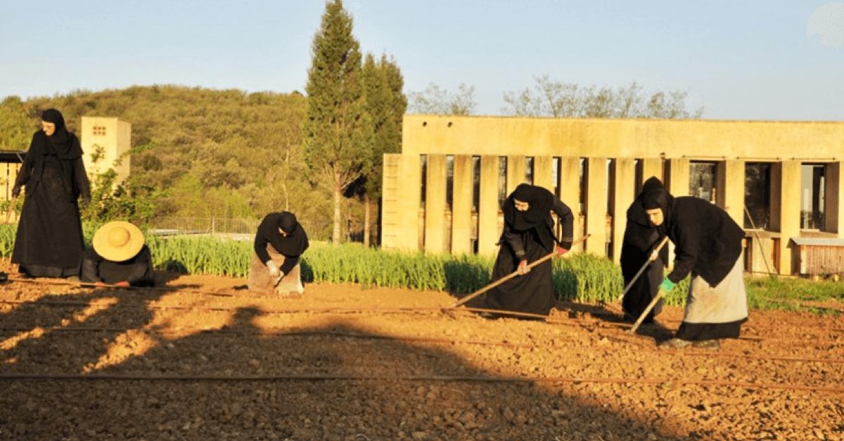 Les soeurs du monastère de Solan travaillent leurs terres au rythme des saisons