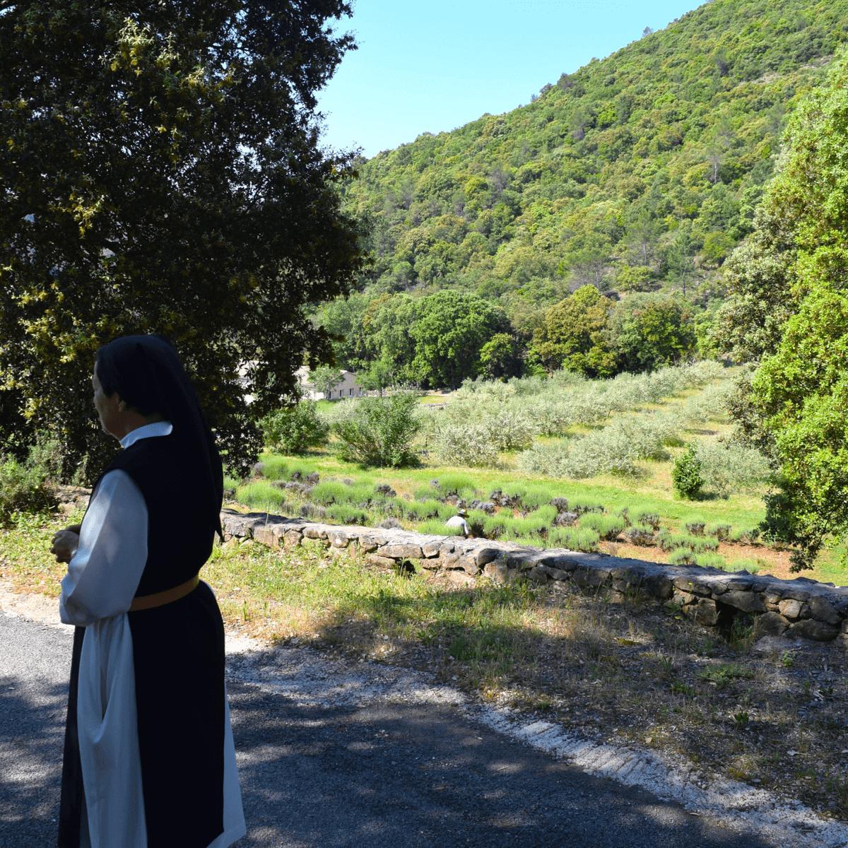 Soeur Claire-Elizabeth devant les champs d'olivier qui servent à la fabrication de l'huile d'olive - Divine Box