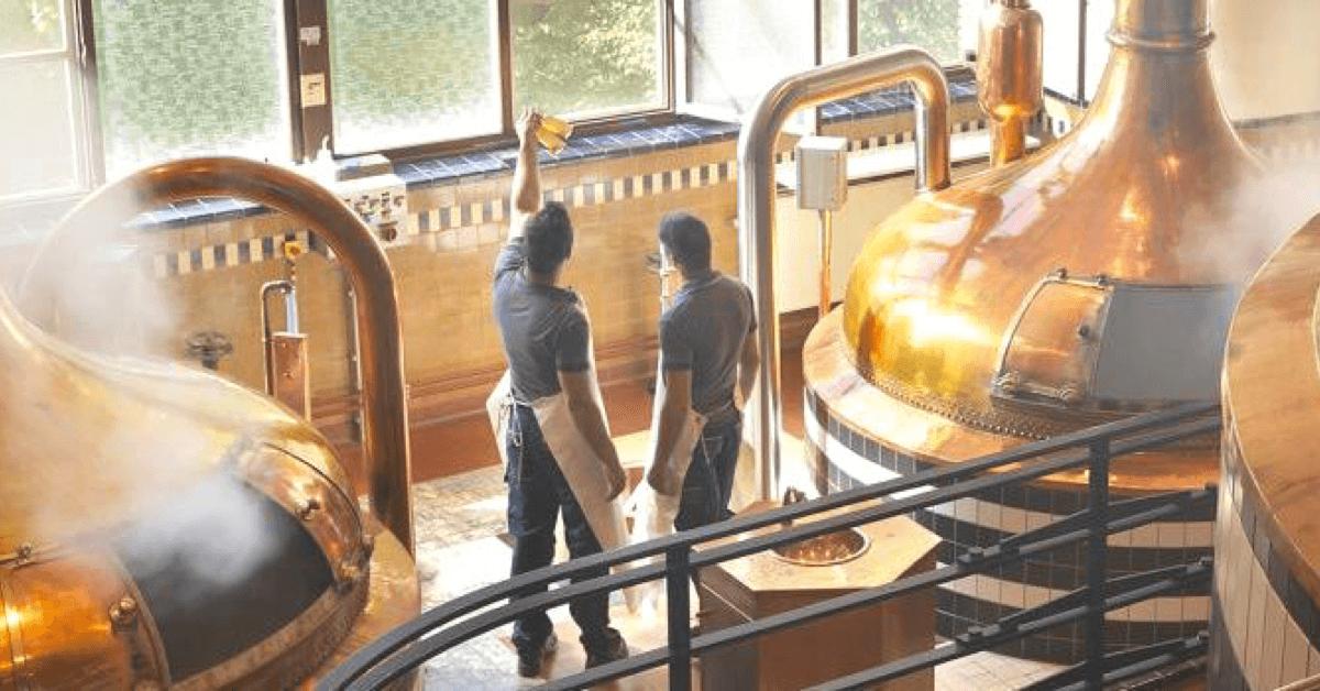 La Westmalle Tripel est brassée dans la plus vieille brasserie trappiste du monde en activité, qui contient encore ces très belles cuves en cuivre