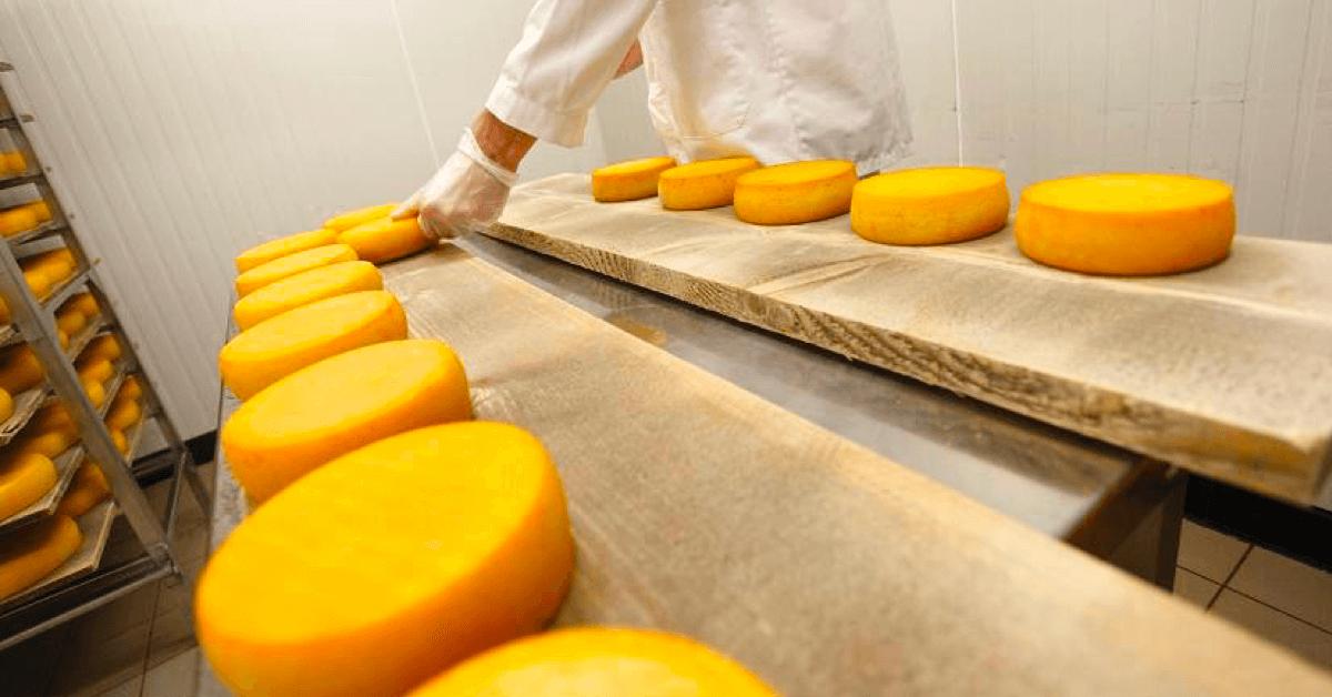 La fromagerie de l'abbaye du Mont des Cats qui fabrique le nouveau fromage affiné à la bière - Crédits photos : Abbaye du Mont des Cats