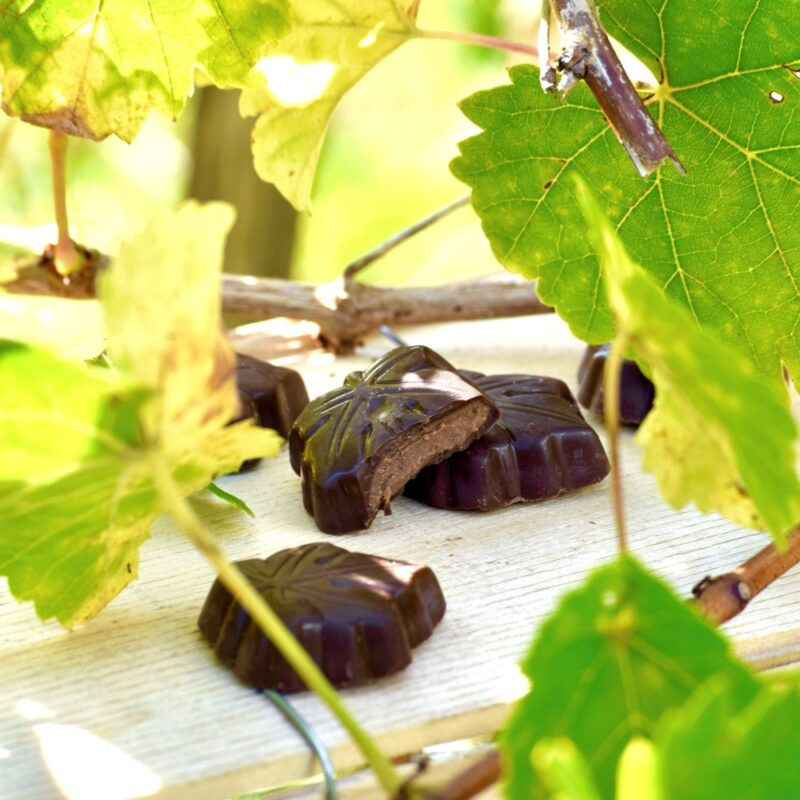 Feuilles de vigne - Abbaye Val d'Igny- Divine Box