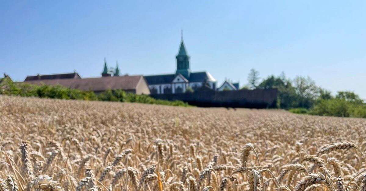 L'abbaye vue des champs-Abbaye d'Oelenberg-Divine Box